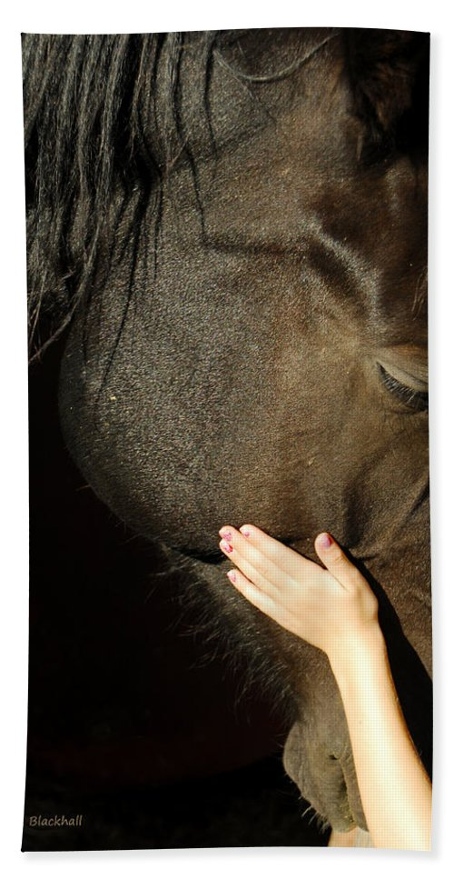Horse Hand Towel featuring the photograph Tenderness by Donna Blackhall