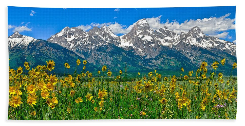 Grand Teton National Park Bath Towel featuring the photograph Teton Peaks And Flowers by Greg Norrell