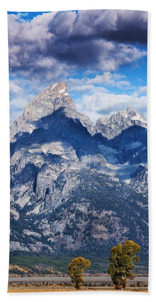 Grand Teton Bath Sheet featuring the photograph Teton Range And Two Trees by Vishwanath Bhat