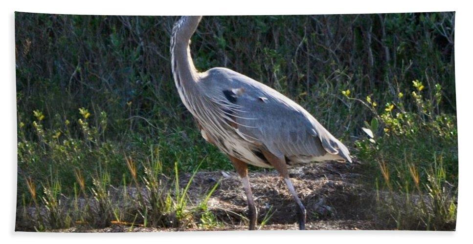 Heron Tote Bag Bath Sheet featuring the photograph Texas Coastal Birds by Kristina Deane
