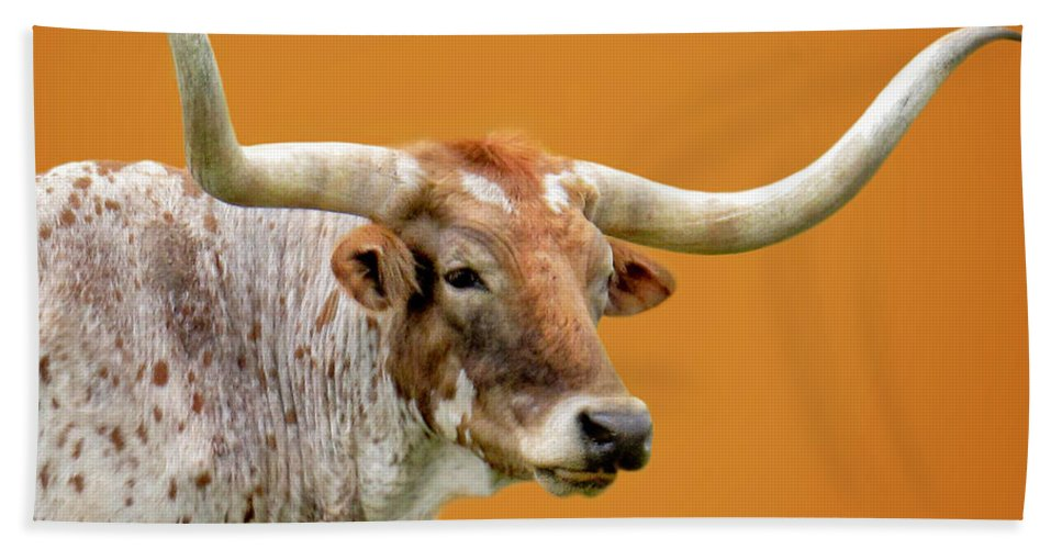 Animals Hand Towel featuring the photograph Texas Longhorn Steer by David and Carol Kelly
