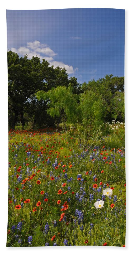 Wildflowers Bath Sheet featuring the photograph Texas Spring Spectacular by Lynn Bauer