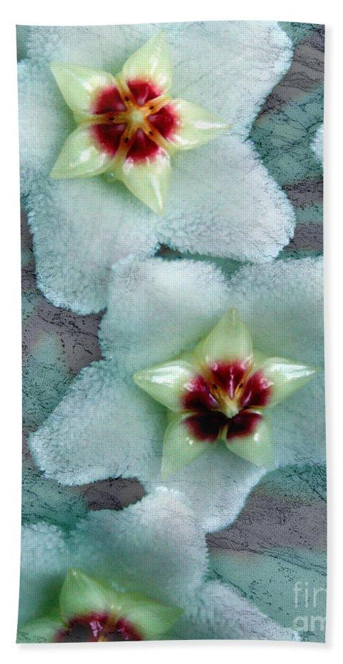 Hoya Bath Sheet featuring the photograph Textured Hoya by Debbie Hart