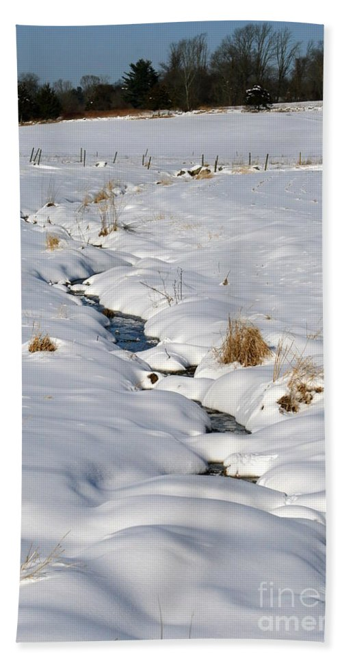Brook Hand Towel featuring the photograph Textured Winter Blues by Neal Eslinger