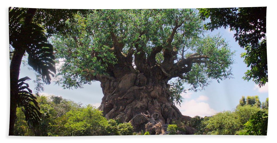 Animal Kingdom Bath Sheet featuring the photograph The Amazing Tree Of Life by Lingfai Leung