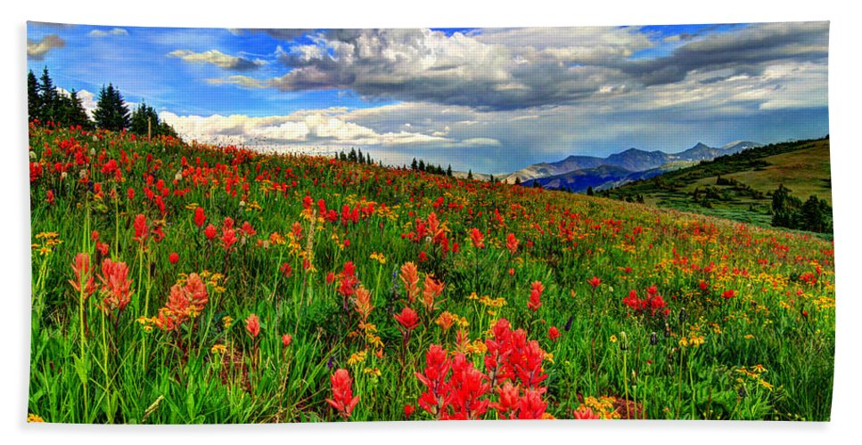 Wildflowers Hand Towel featuring the photograph The Art Of Wildflowers by Scott Mahon