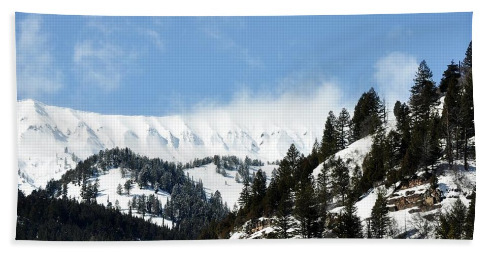 Alpine Wyoming Hand Towel featuring the photograph The Artwork Of Winter by Image Takers Photography LLC - Laura Morgan