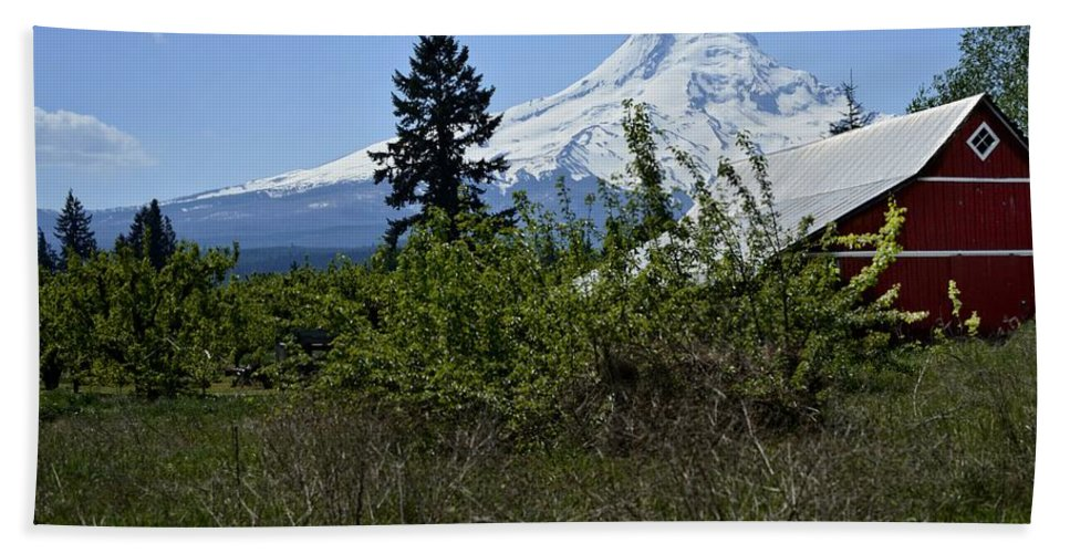 Oregon Hand Towel featuring the photograph The Barn And Mt. Hood by Image Takers Photography LLC - Laura Morgan