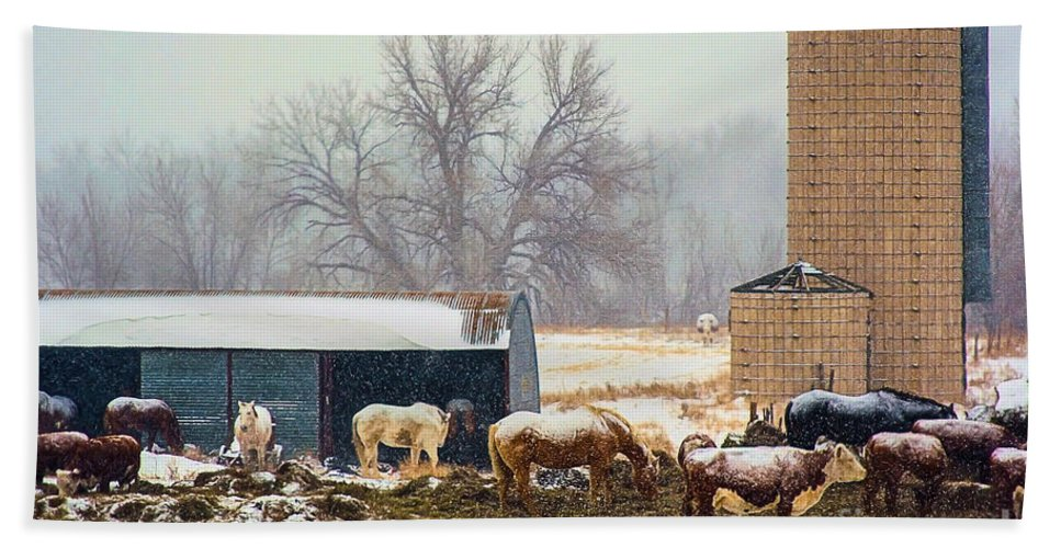 A Barn Yard Captured With The Snowing Falling. Hand Towel featuring the photograph The Barn Yard by Steven Reed