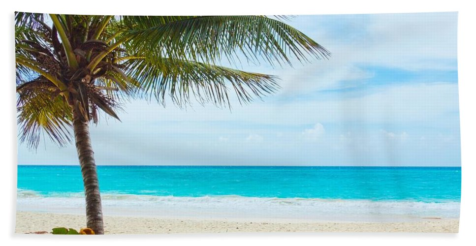 Clearing Bath Sheet featuring the photograph The Beach by FL collection