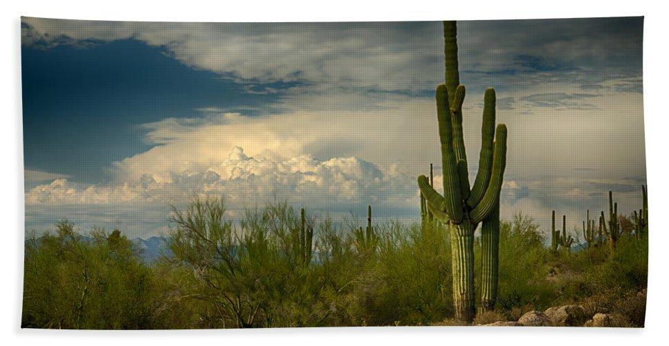 Arizona Bath Sheet featuring the photograph The Beauty Of The Desert Southwest by Saija Lehtonen