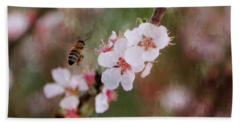 Bee Hand Towel featuring the photograph The Bee In The Cherry Tree by Ericamaxine Price