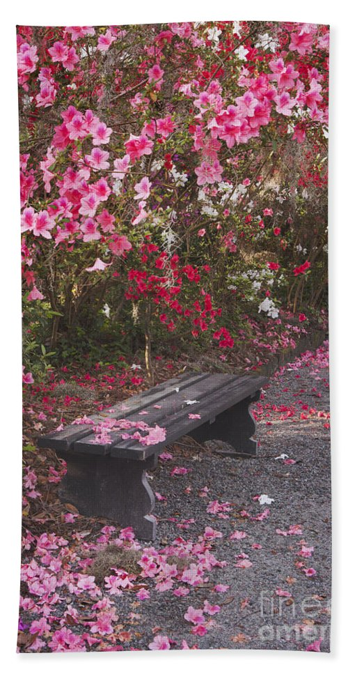 Magnolia Gardens Hand Towel featuring the photograph The Bench by Maria Struss