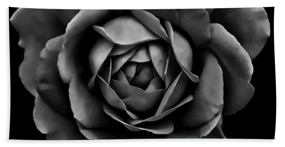 Rose Bath Sheet featuring the photograph The Black Rose Flower by Jennie Marie Schell