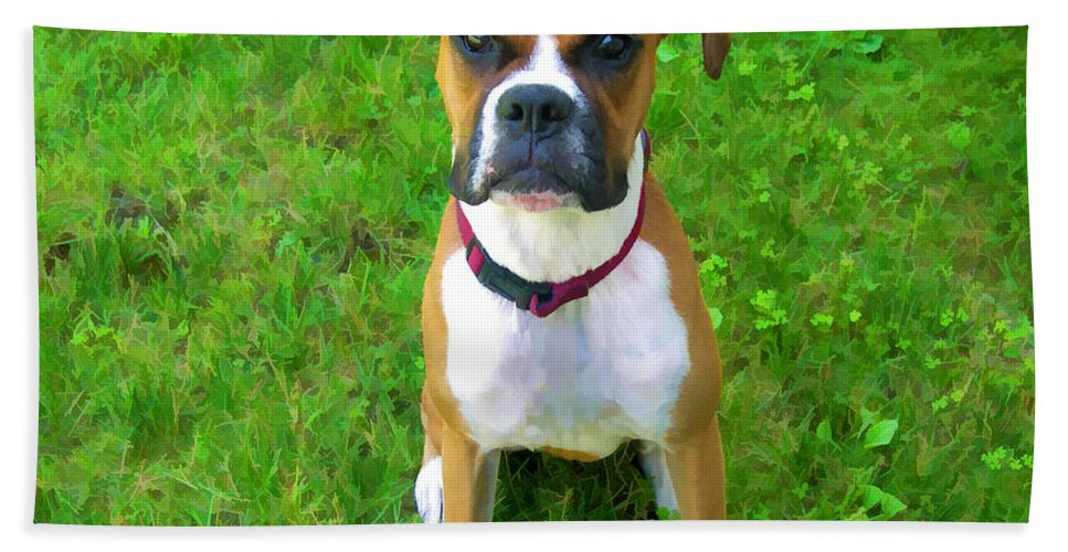 Boxer Hand Towel featuring the photograph The Boxer by Donna Doherty