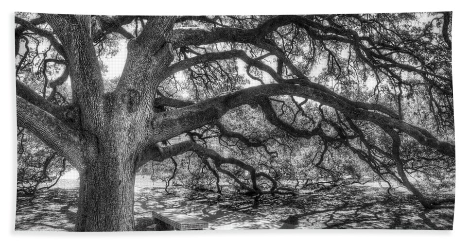 Tree Bath Towel featuring the photograph The Century Oak by Scott Norris