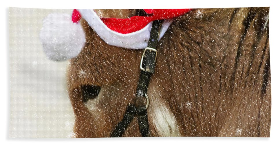 Donkey Hand Towel featuring the photograph The Christmas Donkey by Jenny Gandert