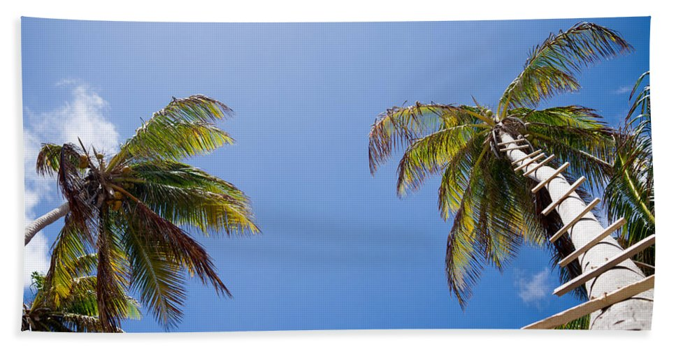 Saint Lucia Bath Sheet featuring the photograph The Coconut Ladder by Ferry Zievinger