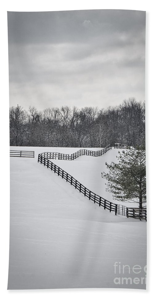 Beautiful Hand Towel featuring the photograph The Color Of Winter - Bw by Mary Carol Story