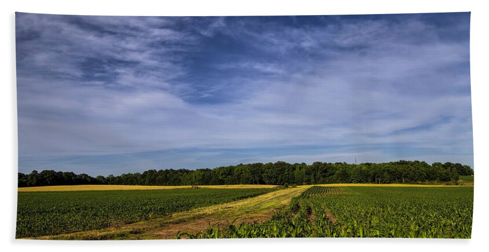 Corn Hand Towel featuring the photograph The Corn Fields Of Alabama by Kathy Clark