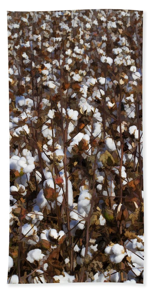 Cotton Hand Towel featuring the photograph The Cotton Buzz In Alabama by Kathy Clark