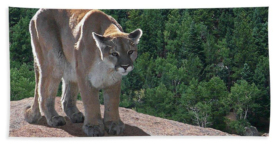 Cats Bath Sheet featuring the digital art The Cougar 1 by Ernie Echols