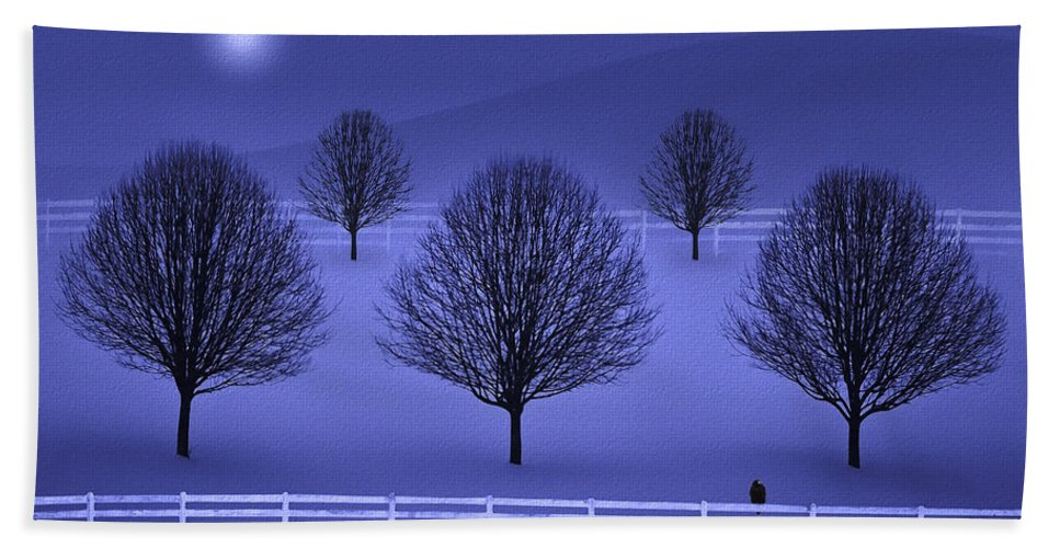 Winter Bath Sheet featuring the photograph The Course by Ron Jones