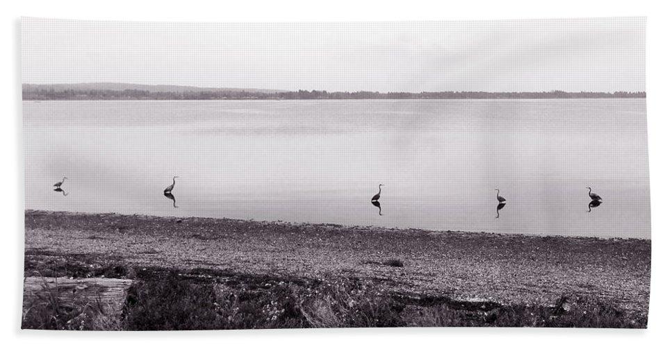 Northern Washington State Bath Sheet featuring the photograph The Cranes In Line by Lorraine Devon Wilke