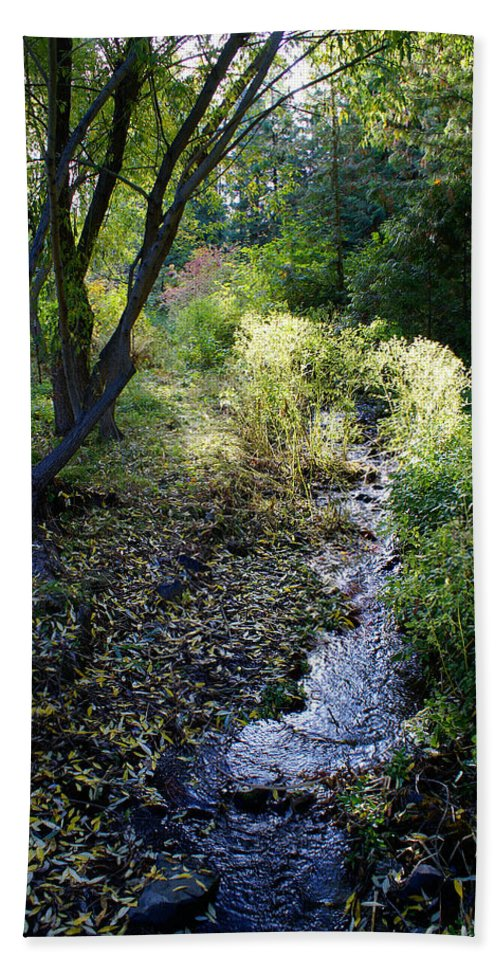 Nature Bath Sheet featuring the photograph The Creek At Finch Arboretum 2 by Ben Upham III