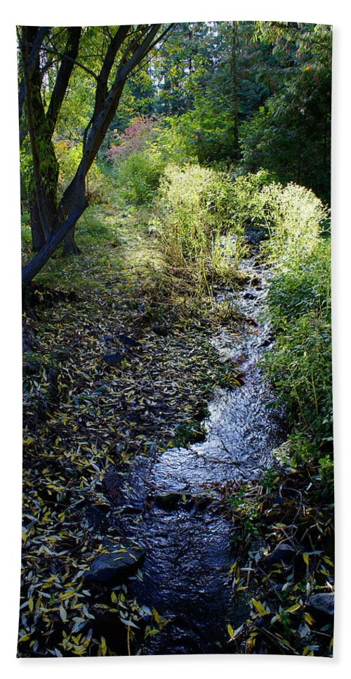Nature Bath Sheet featuring the photograph The Creek At Finch Arboretum by Ben Upham III