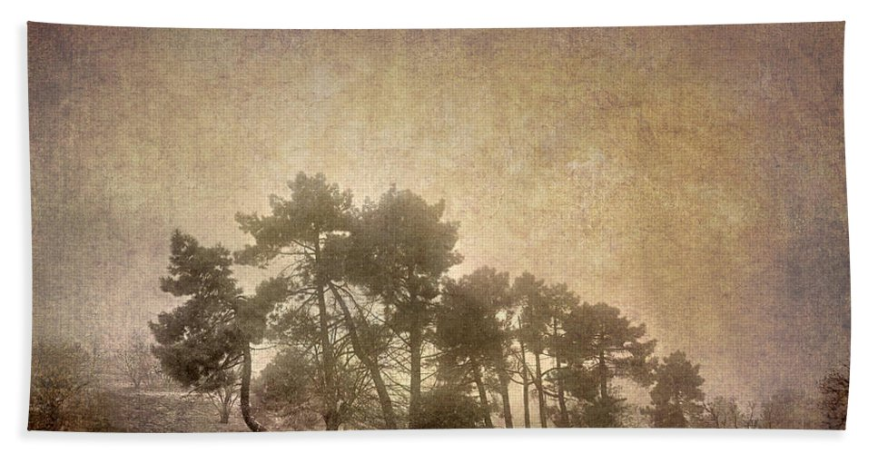 Landscapes Bath Sheet featuring the photograph The Curved Tree by Guido Montanes Castillo