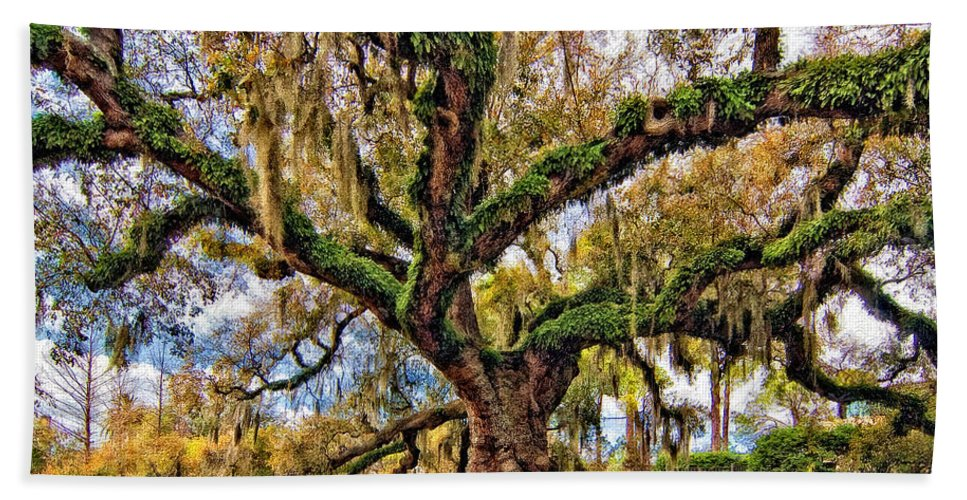New Orleans Bath Sheet featuring the photograph The Dueling Oak Painted by Steve Harrington