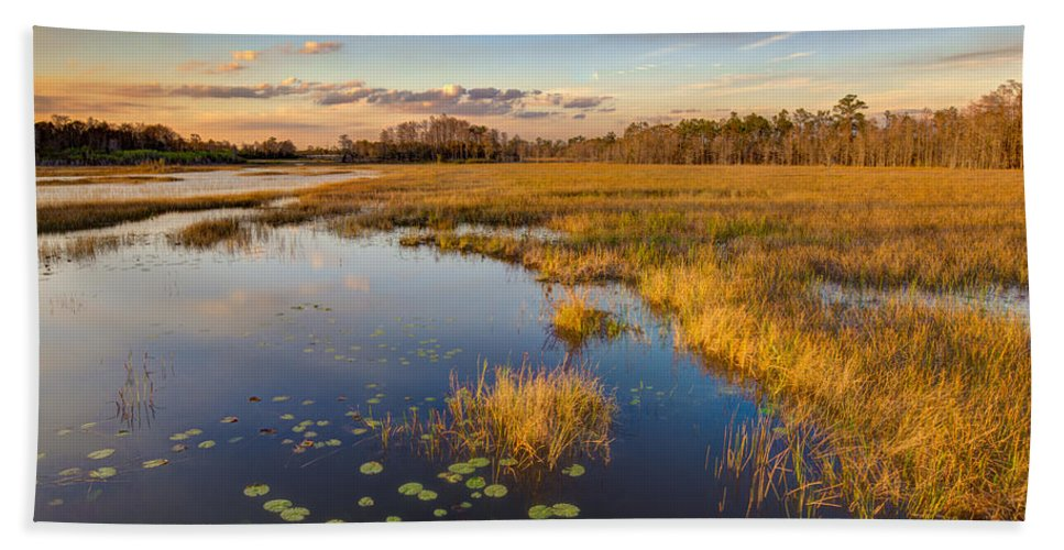 Clouds Bath Sheet featuring the photograph The Everglades by Debra and Dave Vanderlaan