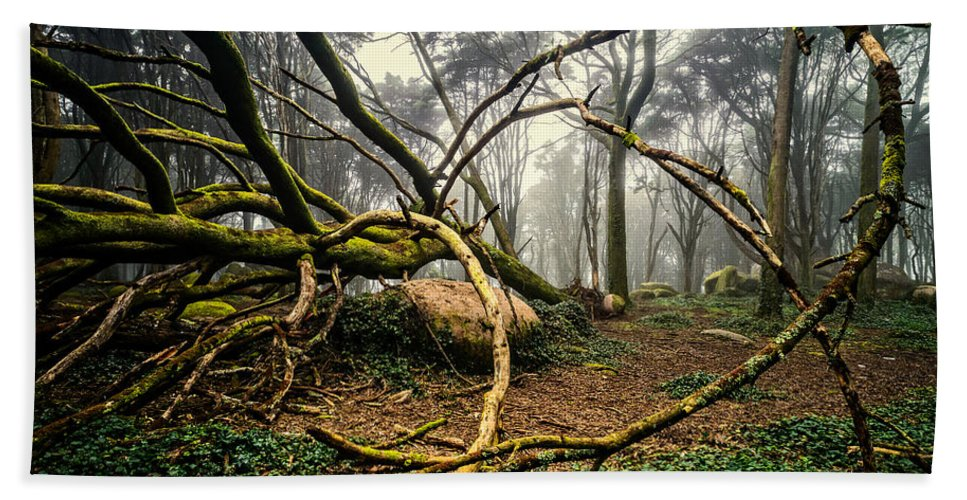 Tree Bath Sheet featuring the photograph The Fallen Tree II by Marco Oliveira