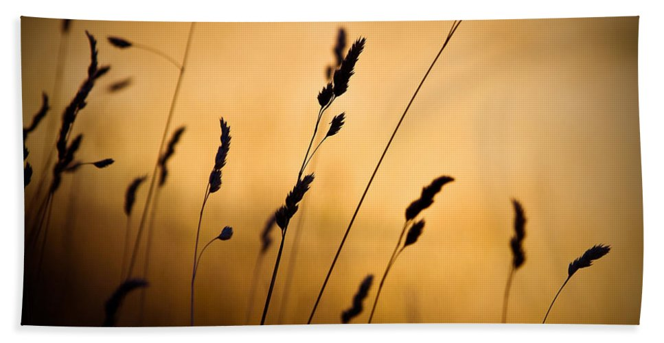 Filed At Sunset Bath Towel featuring the photograph The Field by Dave Bowman
