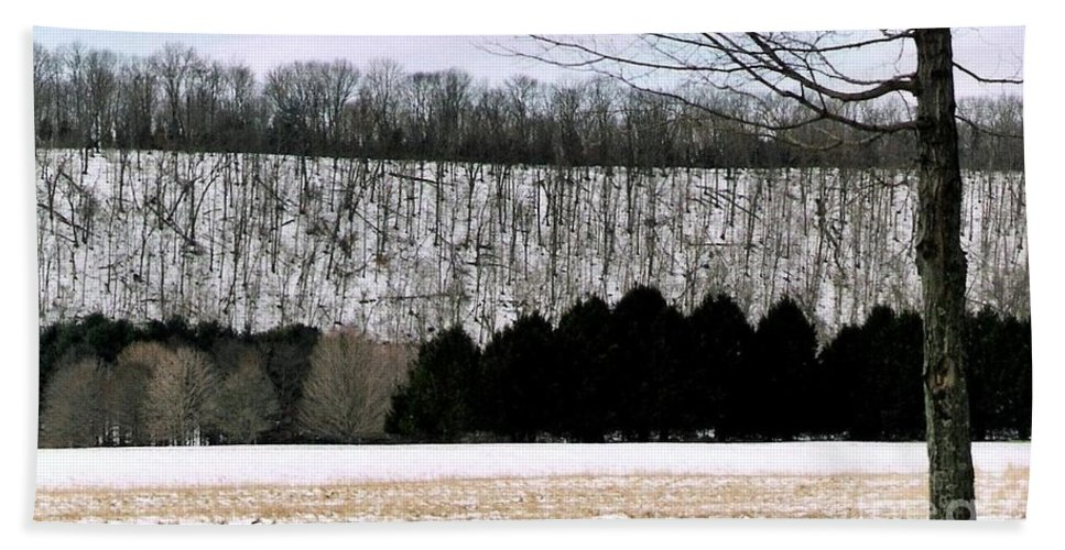 Landscape Photos Hand Towel featuring the photograph The First Snow New Hope Pa by Michael Hoard