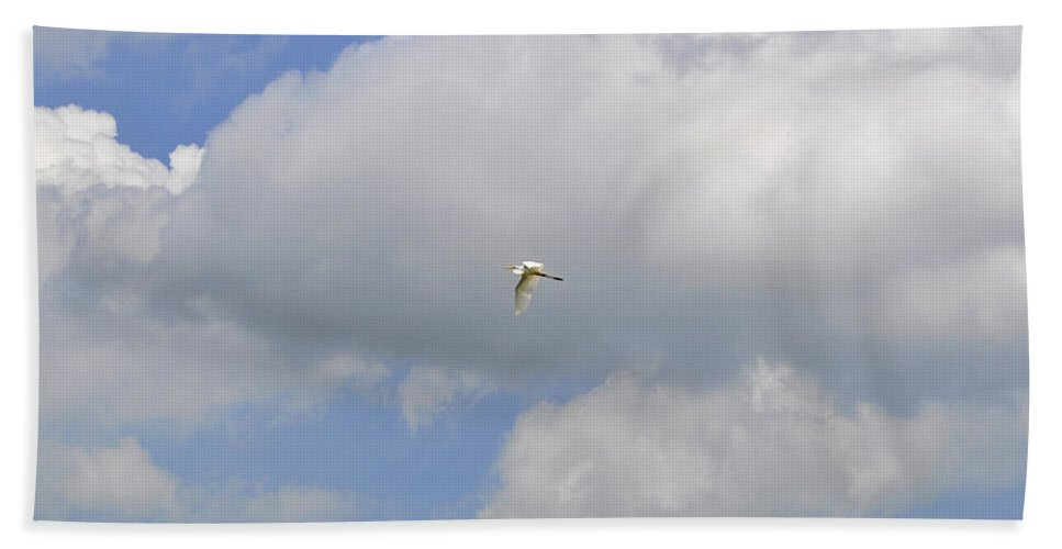 Great Egret Bath Sheet featuring the photograph The Flight Of The Great Egret by Verana Stark