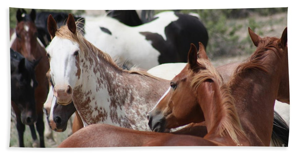 Horses Hand Towel featuring the photograph The Gang by Brandi Maher