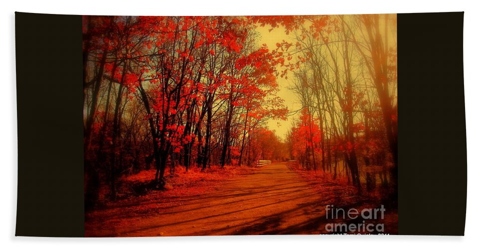 Path Bath Sheet featuring the photograph The Ginger Path by Tami Quigley