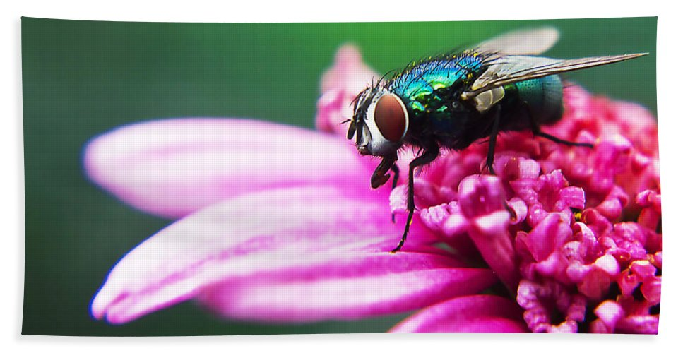 Photography Bath Sheet featuring the painting The Green Fly by Alex Art and Photo