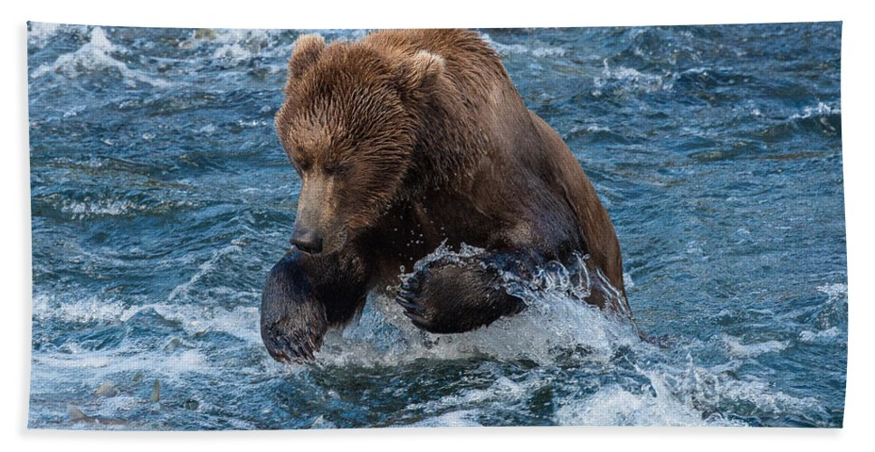 Alaska Hand Towel featuring the photograph The Grizzly Plunge by Joan Wallner