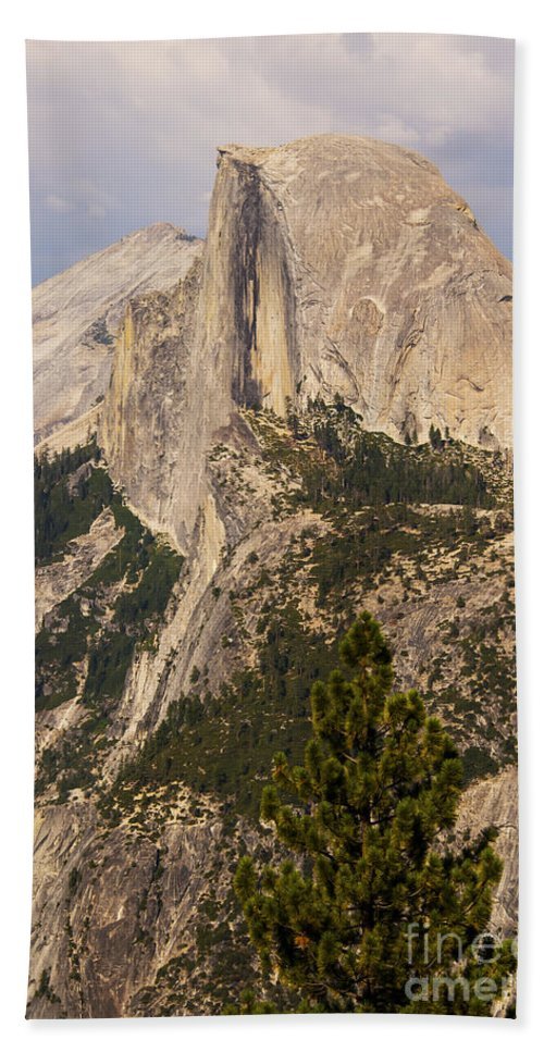 Landmark Landmarks Yosemite National Park California Half Dome Landscape Landscapes Landmark Landmarks Fir Tree Trees Mountain Mountains Parks Bath Sheet featuring the photograph The Half Dome by Bob Phillips