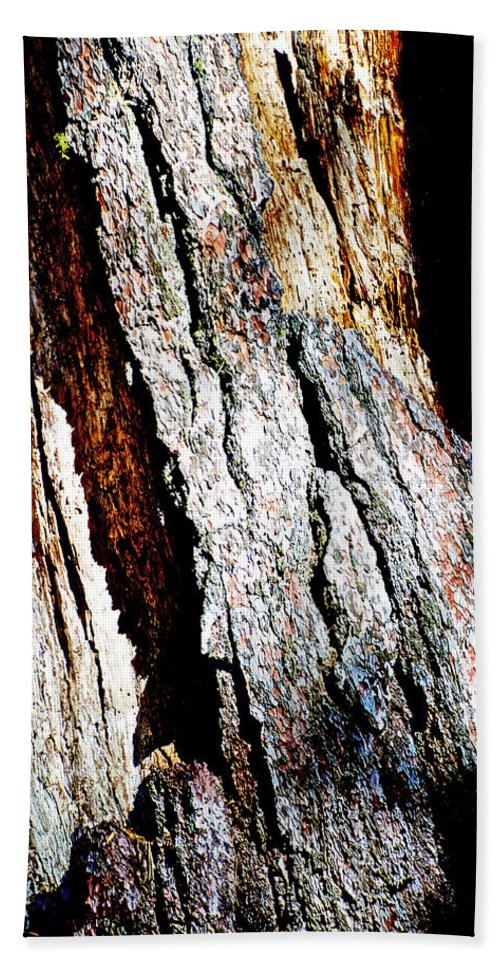 The Heart Of Barkness In Mariposa Grove In Yosemite National Park-california In Mariposa Grove In Yosemite National Park Bath Sheet featuring the photograph The Heart Of Barkness In Mariposa Grove In Yosemite National Park-california by Ruth Hager