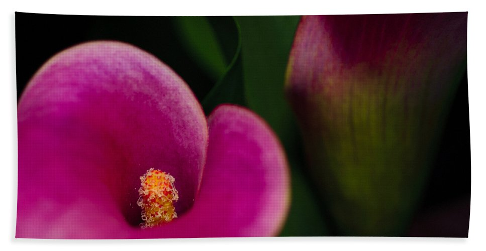 Beautiful Bath Sheet featuring the photograph The Heart Of The Lily by Christi Kraft