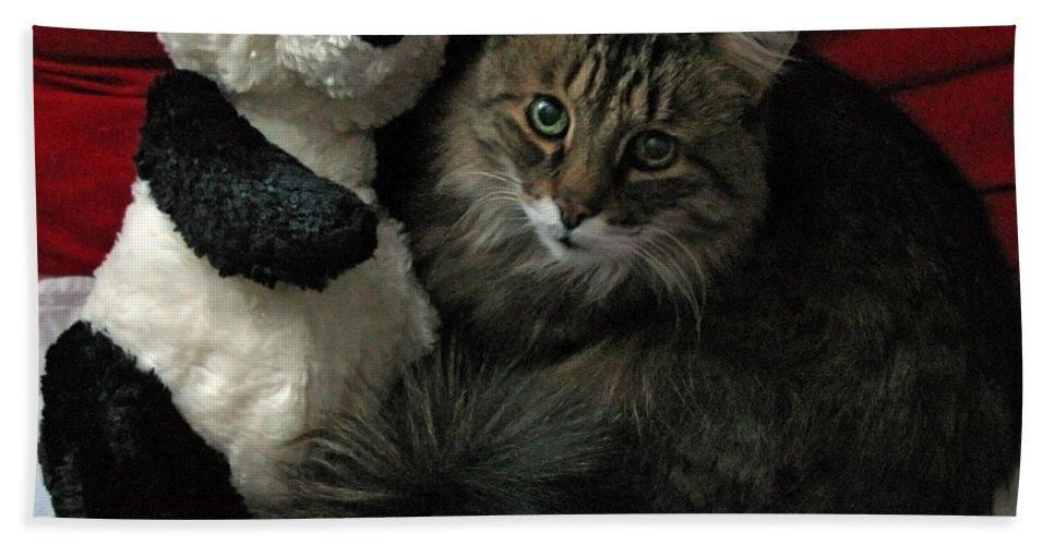 Pets Hand Towel featuring the photograph The King Kitty And Panda 01 by Ausra Huntington nee Paulauskaite