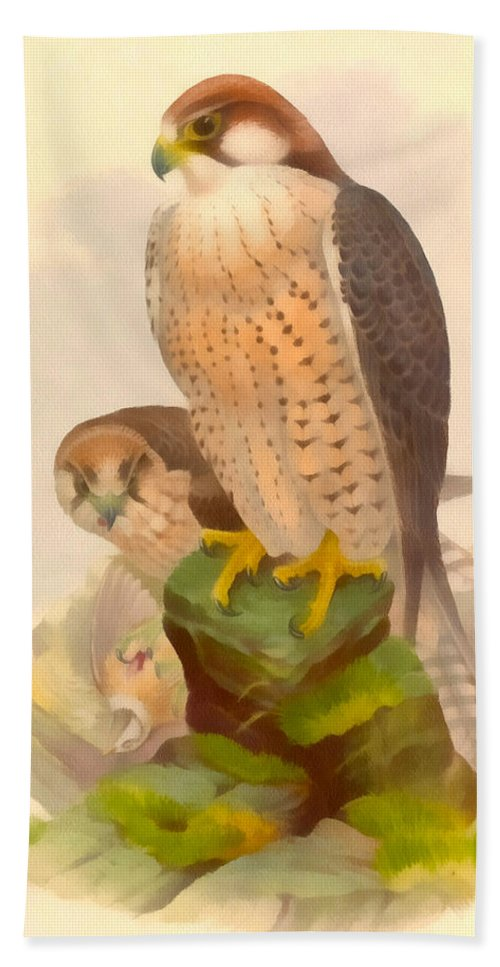Vintage File Collection Hand Towel featuring the digital art The Lanner Falcon by Vintage File Collection