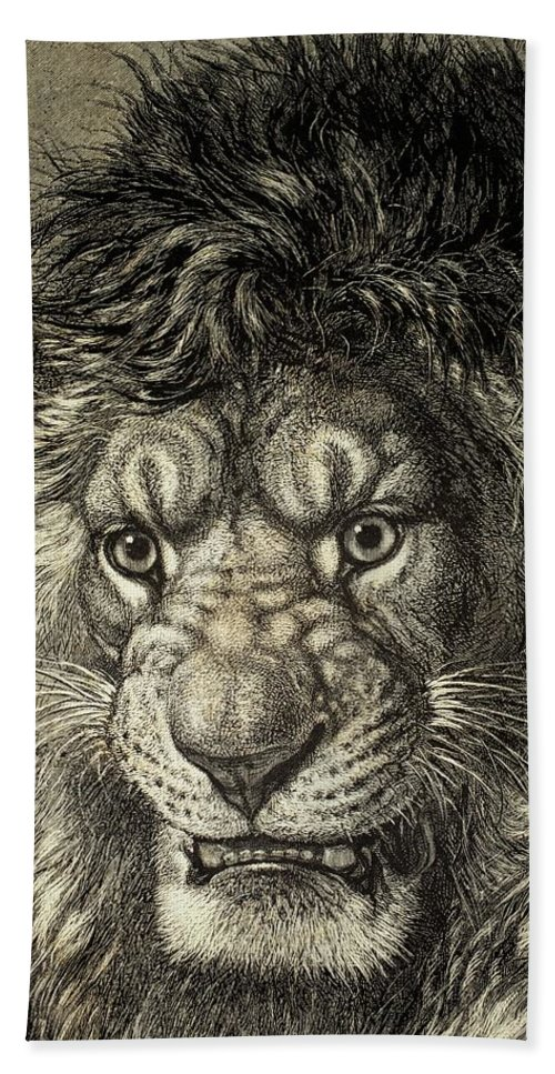 Lion Bath Towel featuring the drawing The Lion by European School