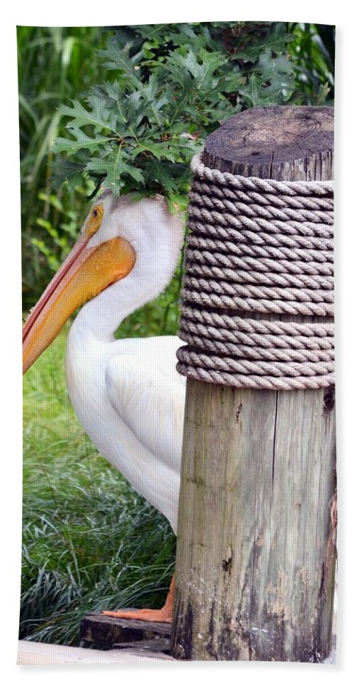 Lone Hand Towel featuring the photograph The Lone Pelican by Maria Urso