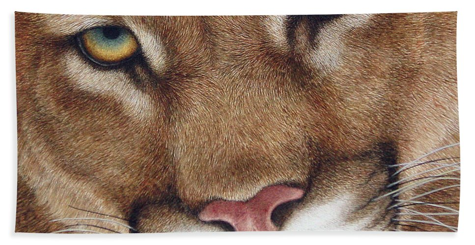 Cougar Hand Towel featuring the painting The Look Cougar by Pat Erickson