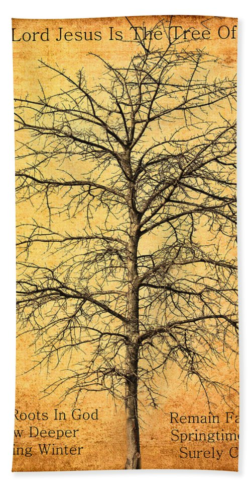 Lord Jesus Hand Towel featuring the photograph The Lord Jesus Is The Tree Of Life by Kathy Clark